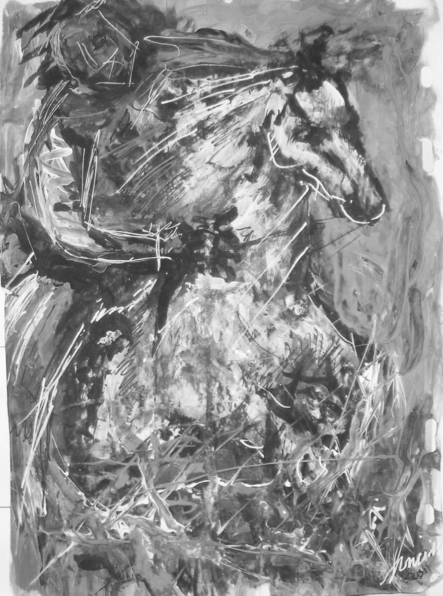cavaliere-normanno